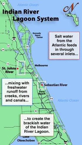 The Indian River - Indian river lagoon map